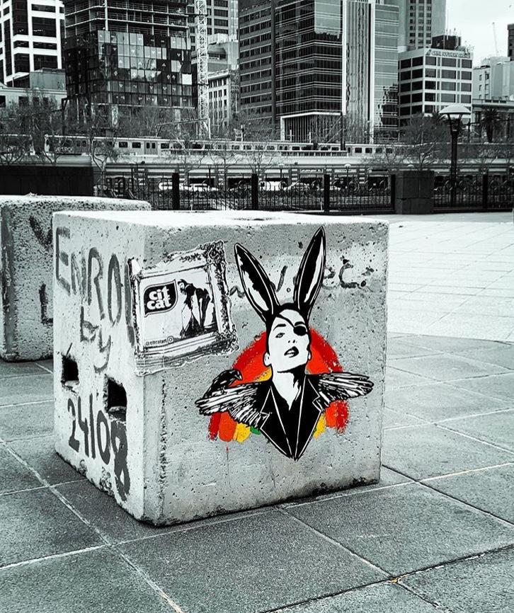 Rabbits in Melbourne